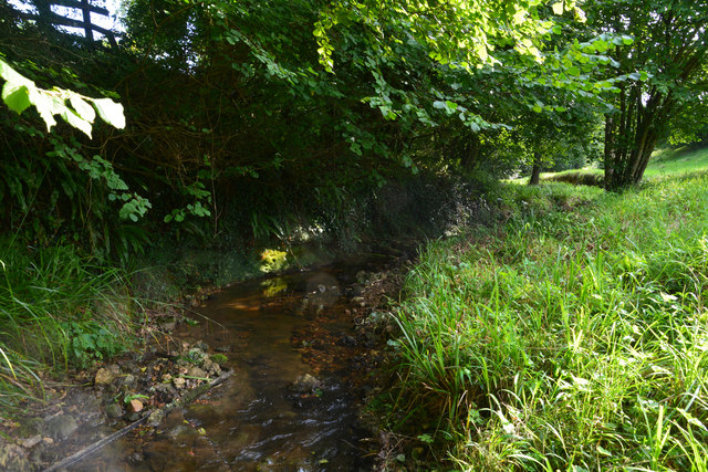 West Dorset : Small Stream