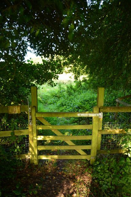 West Dorset : Gate