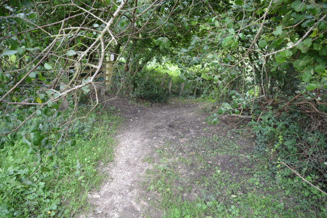 West Dorset : Path