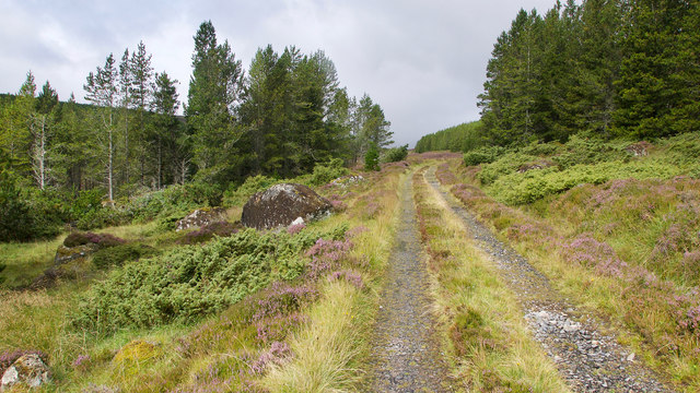 Hill track from Strath Rusdale to Glen Calvie