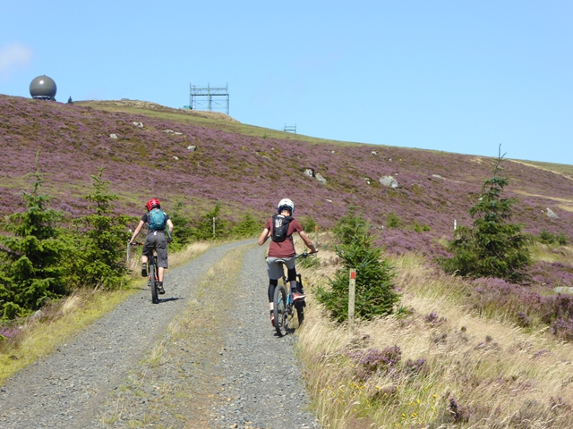 The road up Deadwater Fell