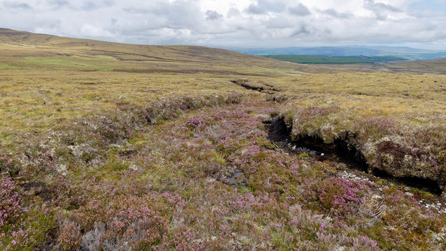 Peat and heather above Coire Bhenneit