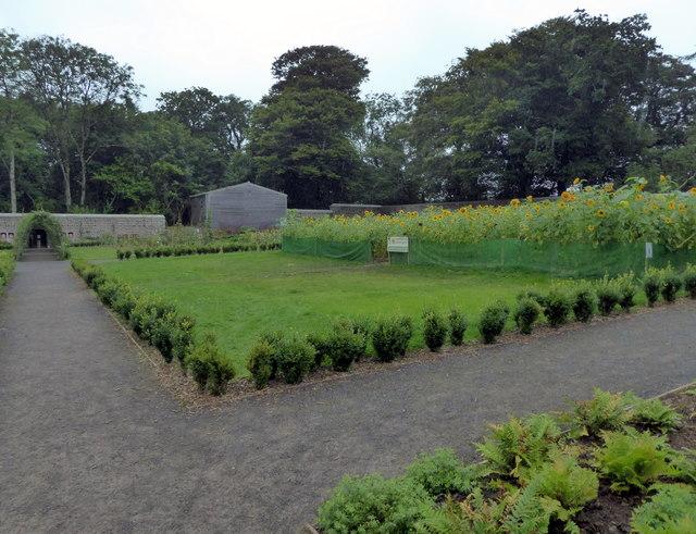 Walled Garden, Scolton Manor