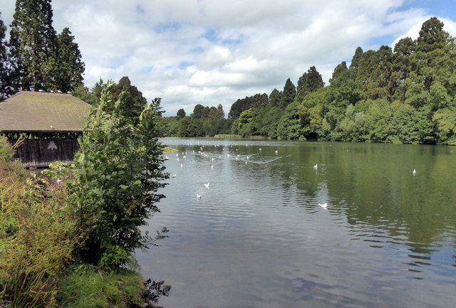 Lake at Tredegar House Country Park