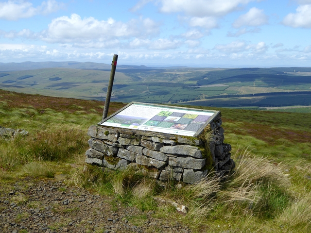 Viewpoint on Deadwater Fell