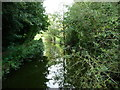 SK4554 : Pinxton Arm of the Cromford Canal, looking west by Christine Johnstone