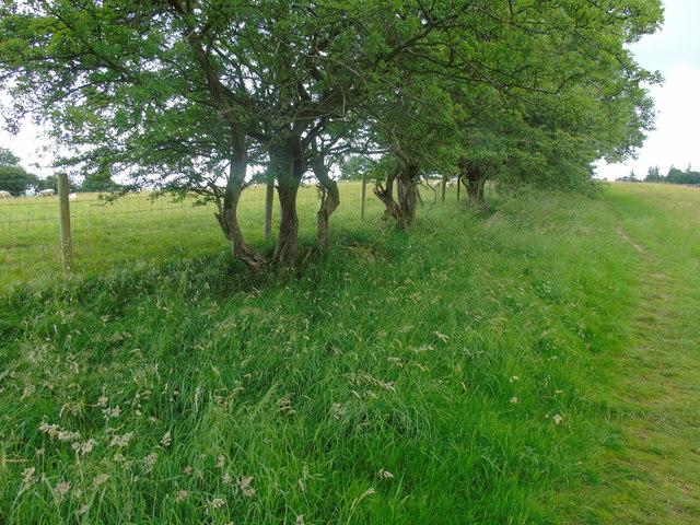 Hebden to Grassington Park Estate