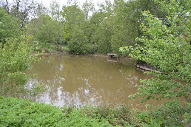 Small lake, Dunorlan Park