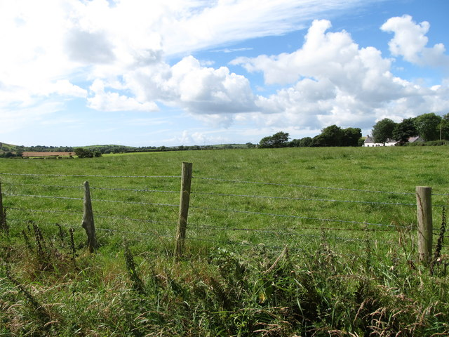 Grassland on the South side of Ballyfounder Road