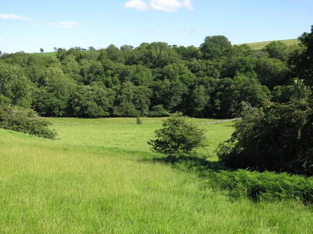 Farmland and woodland around the Rowley Burn