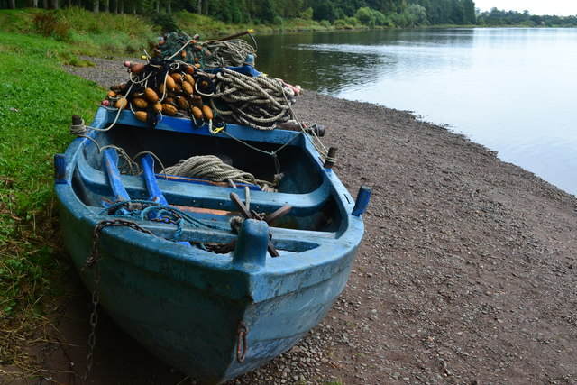 Blue boat on the bank of the River Tweed, Paxton estate