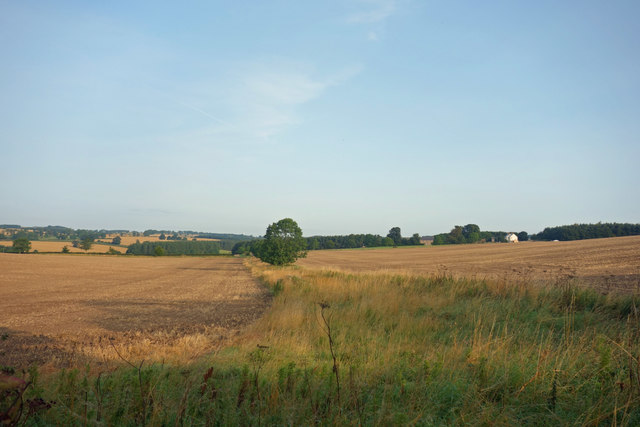 Farmland, North Hazelrigg