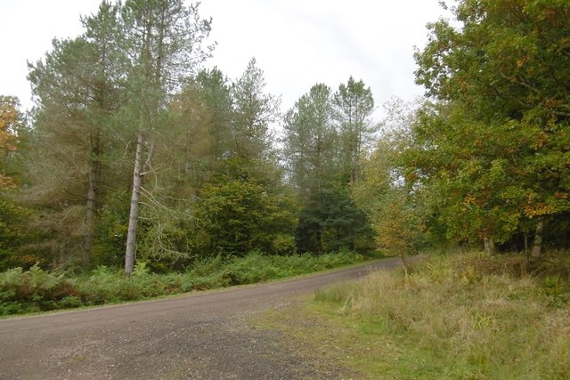 Road to Redding's Lodge