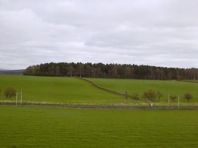 Horse Close Plantation