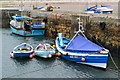 NU2328 : Beadnell Harbour by David Martin