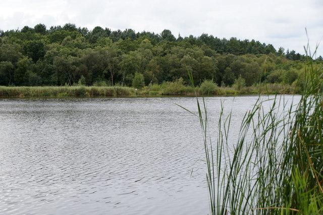 Hatch Mere, near Delamere