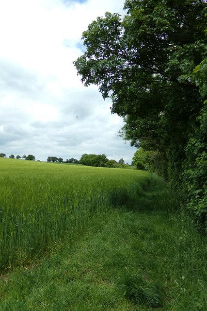 Footpath to Dunwich Lane