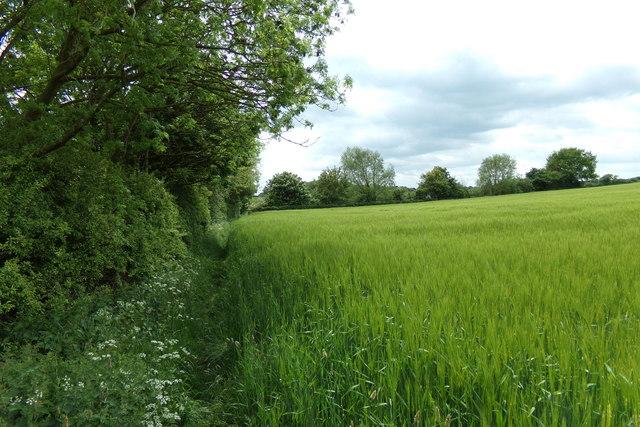 Footpath to Hubbard's Hill