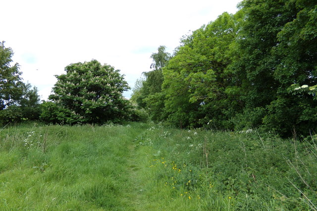 Footpath to Dunwich Lane