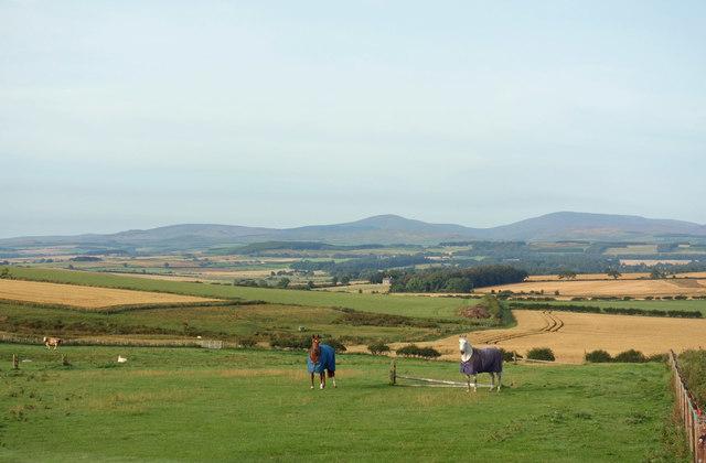 View near North Lyham