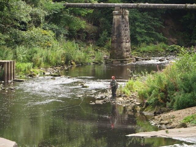 The River Wansbeck at Highford Bridge