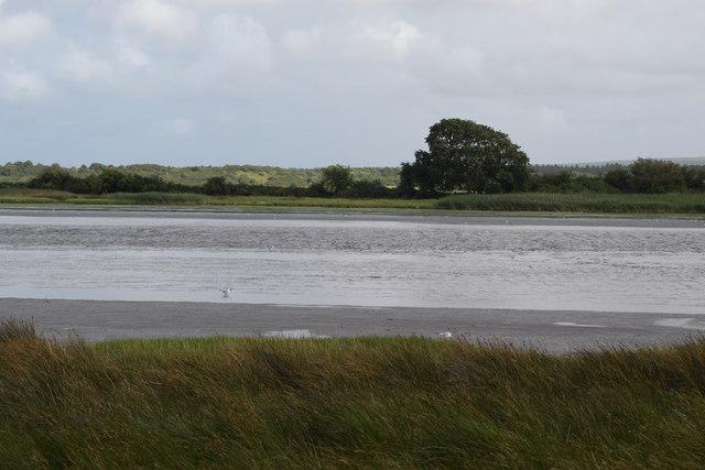 View across Middlebere Lake