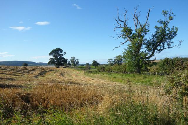 Farmland near West Lyham