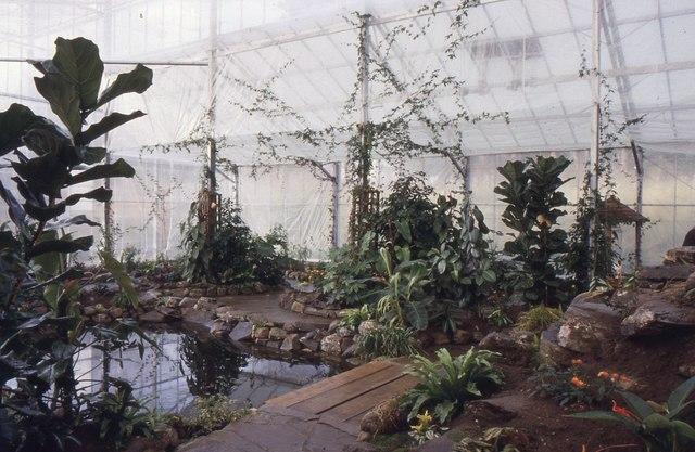 Aviemore Butterfly Garden