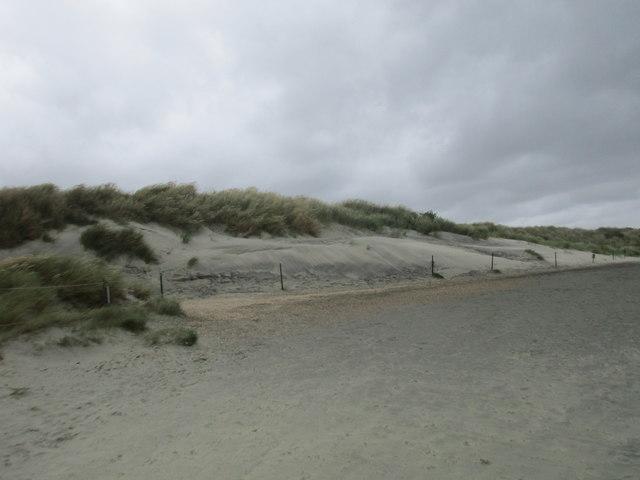 Fragile sand dunes at The Spit