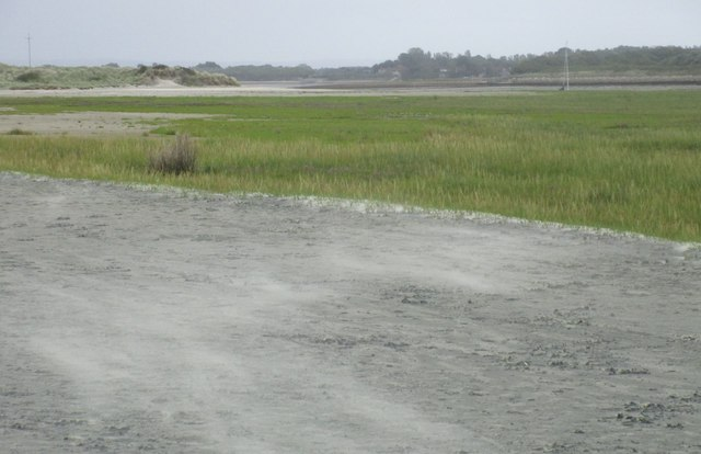 Sand and salt marsh