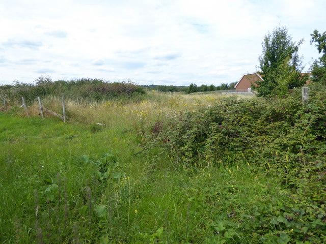 Rough land off Lodge Lane