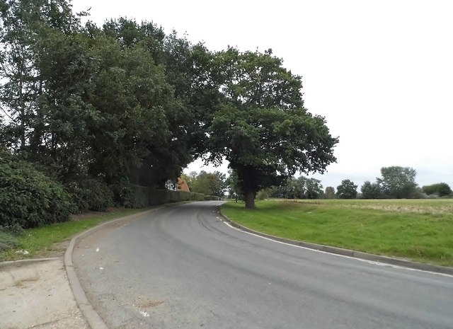 Bend on Hastingwood Road, Magdalen Laver