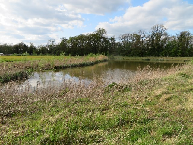 A new pond by Long Road