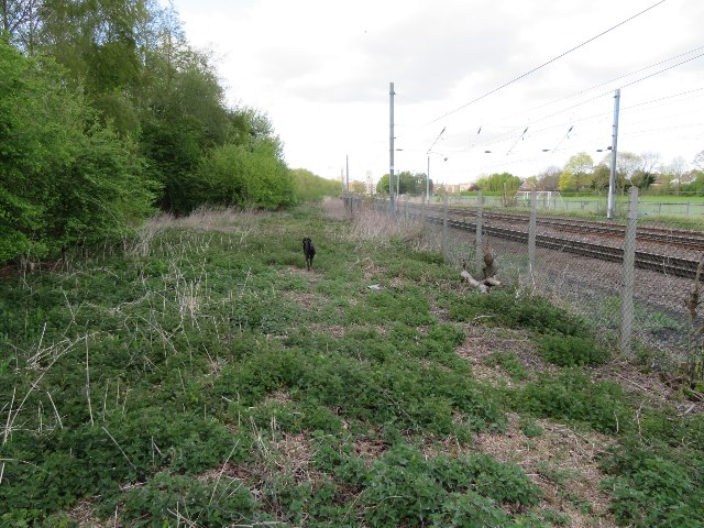 Rough land by the railway