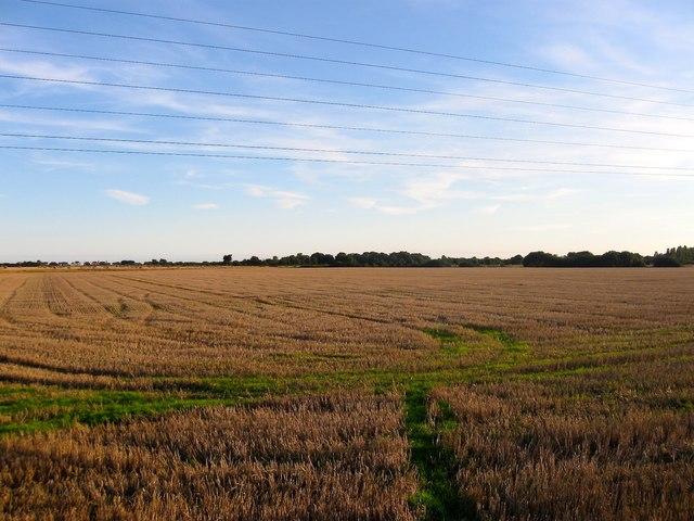 Dencher Field/Lower Barn Field/Long Lakes (2)