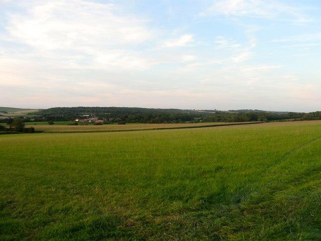 Rodge Land/Rodge Land Croft/Sheep Lands/Cow Ground