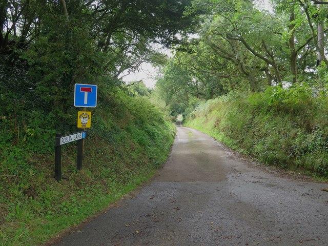 View down Roslin Lane