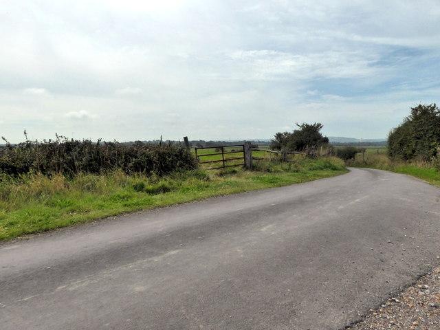 Lane near Horse Eye Level