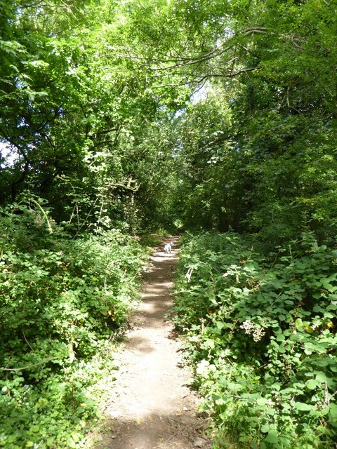 Footpath following old trackbed