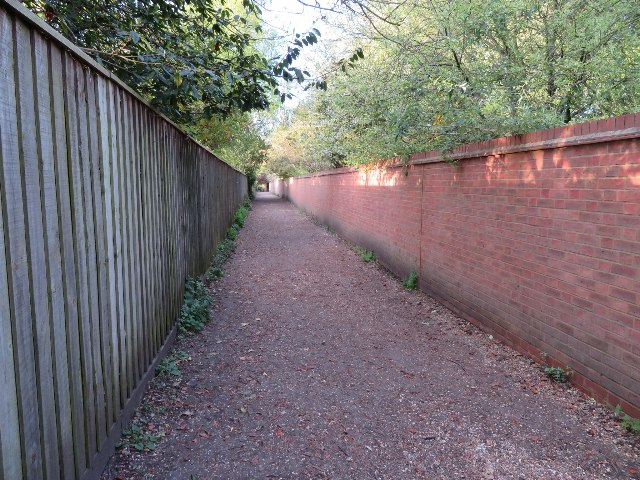 Path to Chaucer Road