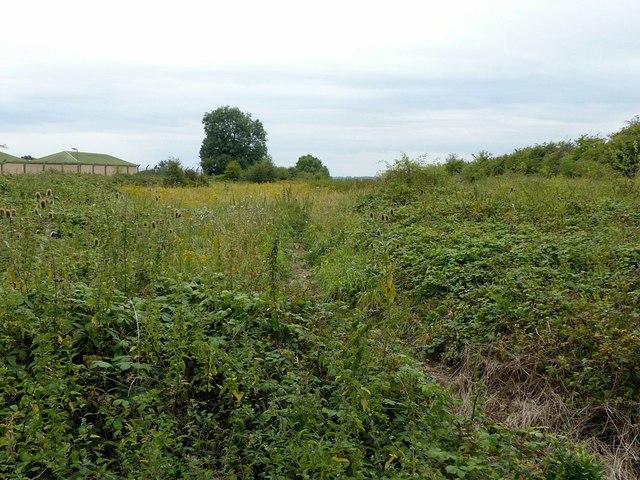 Site of Hopton Heath cutting