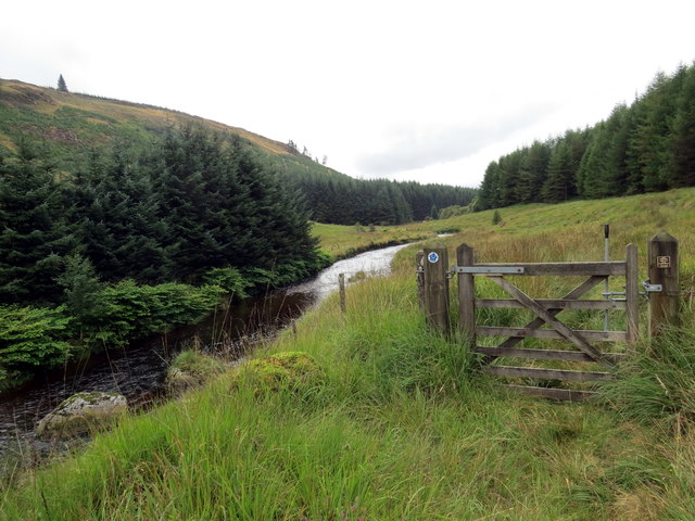 Ar lan Afon Tywi  / On the banks of the Tywi River