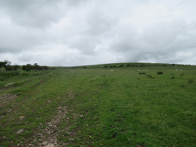 Footpath towards Reaveley Hill