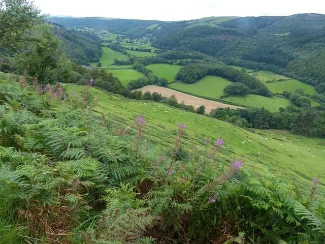 Overlooking the Melinddwr valley