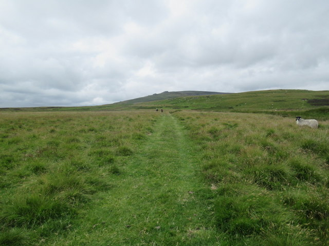 Bridleway towards Linhope