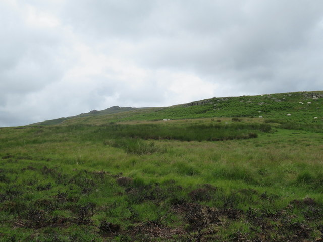 Moorland and Crags