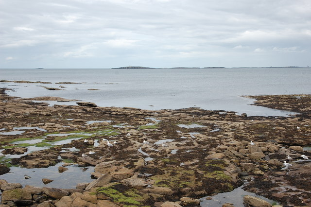 Rocky foreshore at Seahouses