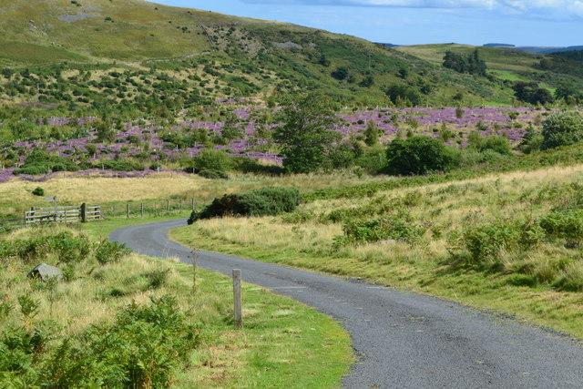 Road descending past Bell's Valley
