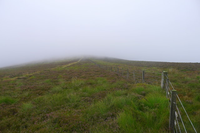 Bend in the boundary fence on Lucken Head