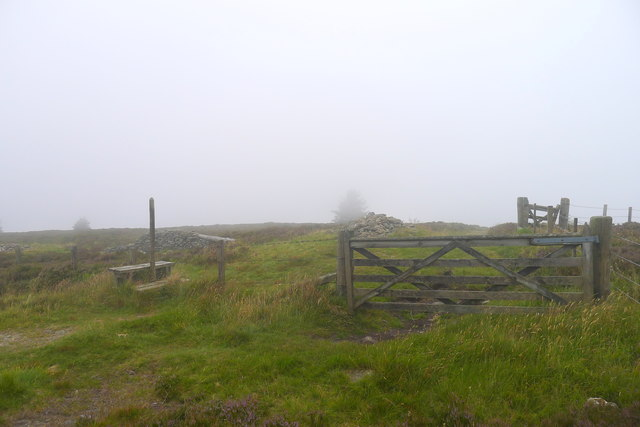 Stile and gate on Brown Knowe